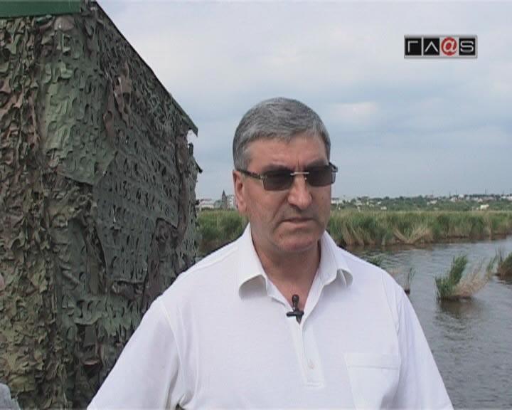 Николай Кисеолар