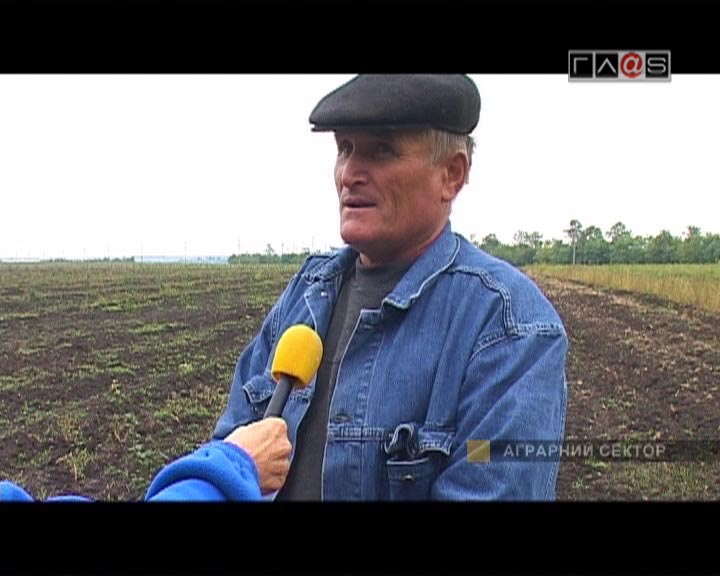 Осенние заботы сельхозпроизводителей