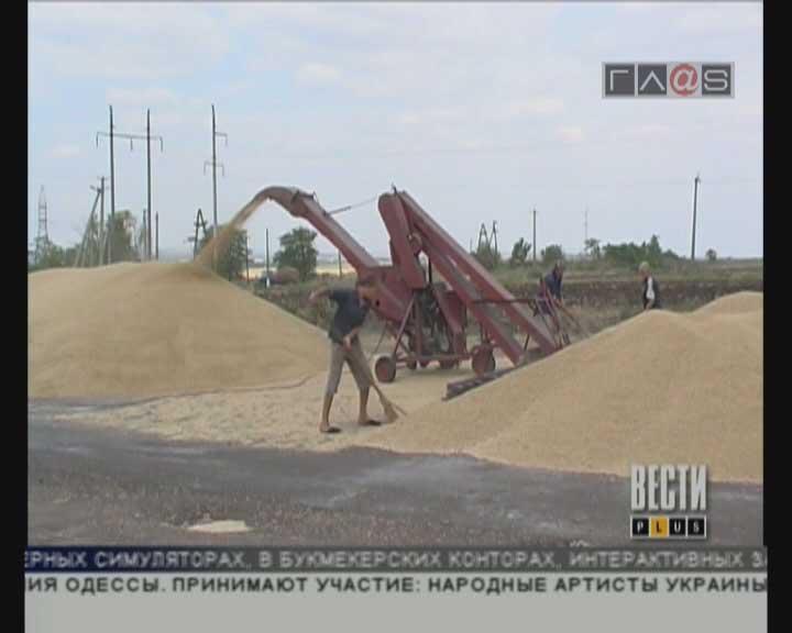 Гидрометеорологический центр предрекает хороший урожай зерновых