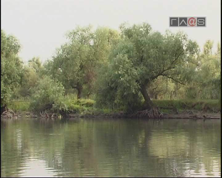Экосистема Днестра