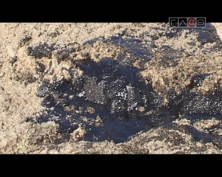 Нефть на одесском побережье.