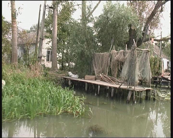 Водно-болотные угодья и климат