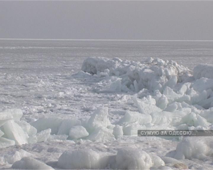 Чёрное море замёрзло / Февраль 2012