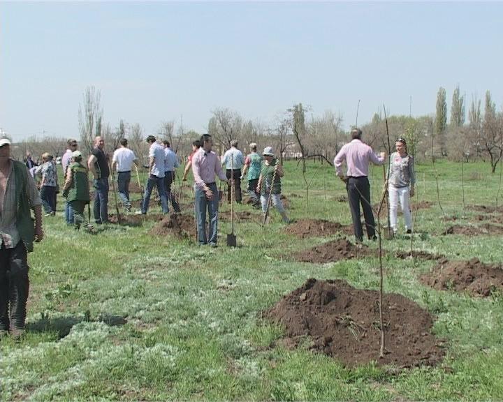 Субботник – в гидропарке Лузановка