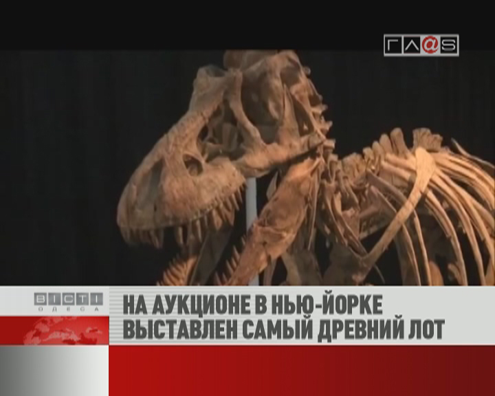 ФЛЕШ-НОВОСТИ за 17 мая 2012