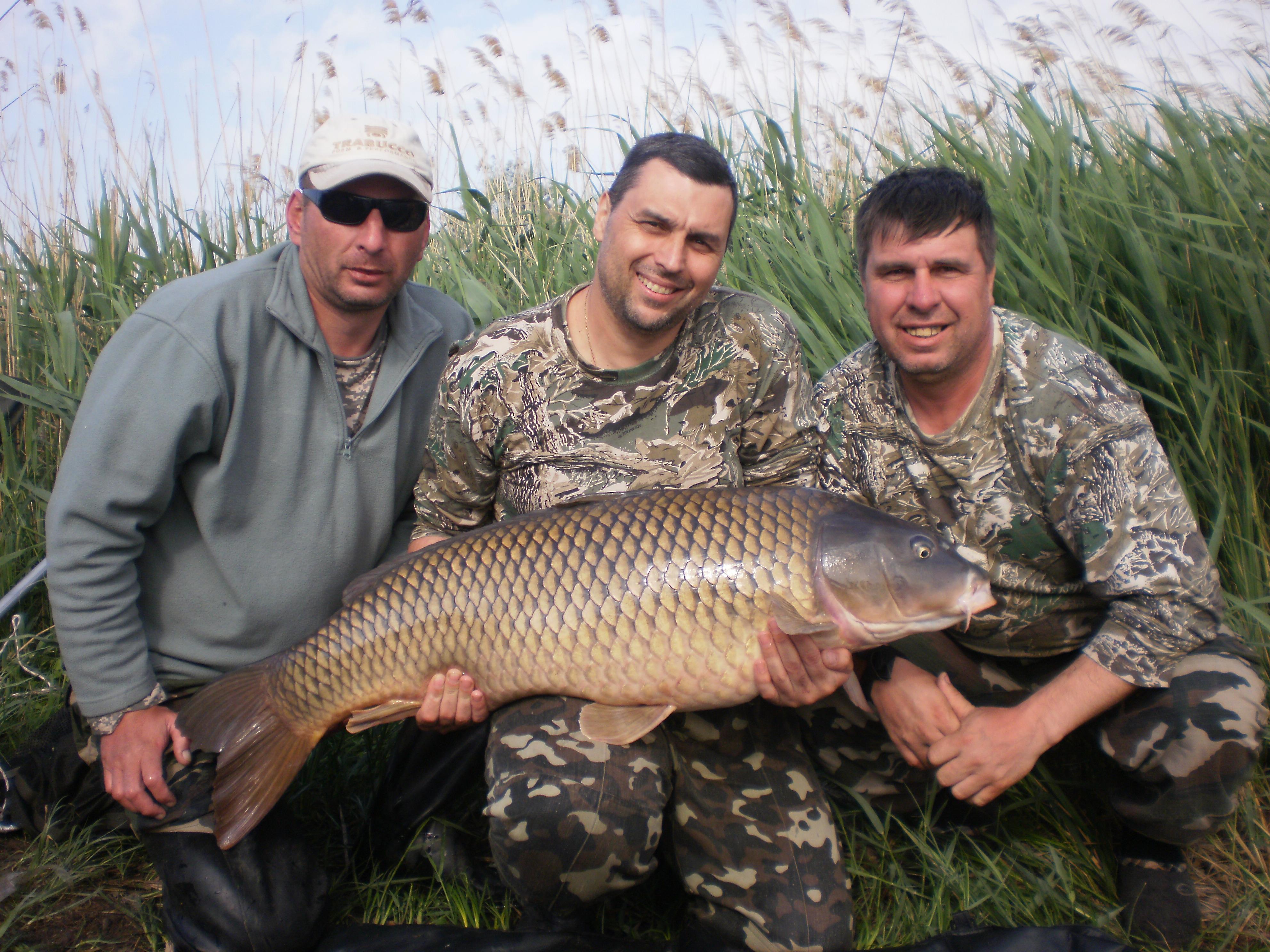 Чемпионат в Одесской области по ловле карпа: результаты и рекорды