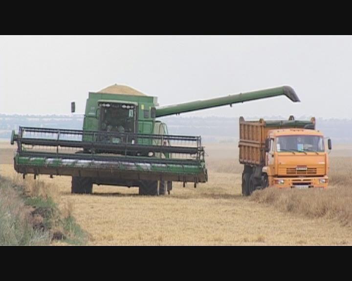 Парадокс безработицы в аграрной области
