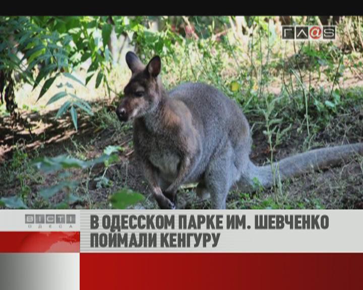ФЛЕШ-НОВОСТИ за 27 сентября 2012