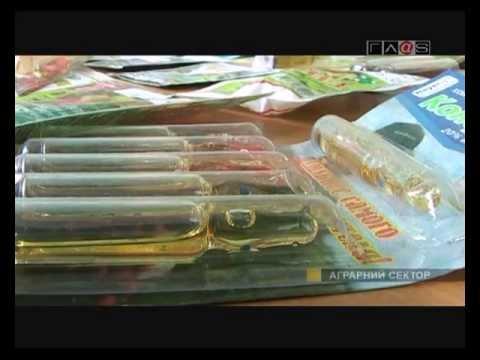 Поддельные пестициды: рынок мелкой фасовки