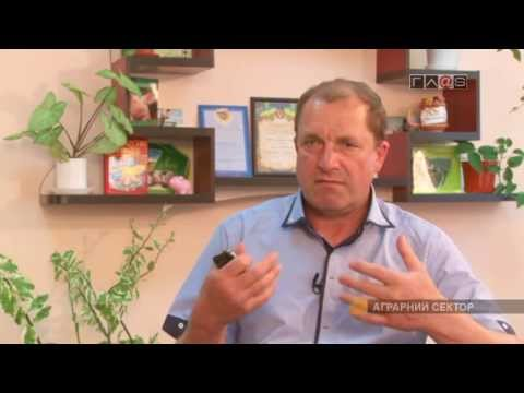 Заслуженная награда Василия Лымаря