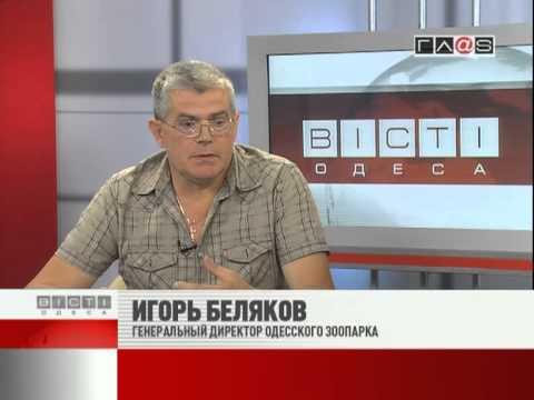 ВЕСТИ ОДЕССА / гость в студии Игорь Беляков