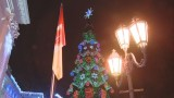 Главная ёлка Одессы засияла на Думской