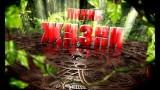 Людмила Завала / «Медиум» / 22 февраля 2016