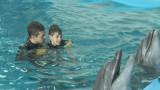 Дети с ДЦП: дельфинотерапия в подарок