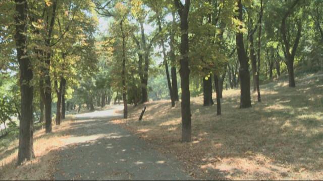 В Одессе появится Греческий парк