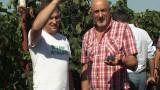 Аграрная Бессарабия