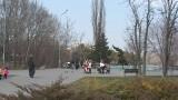 1200 деревьев высадят в парке Победы