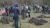В Одессе прошел субботник в дендропарке «Победа»