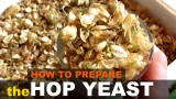 How to make the hop yeast  // Готовим хмелевую закваску