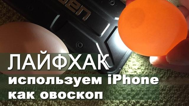 ЛАЙФХАК!  Используем iPhone как овоскоп /  LIFEHACK — iPhone works as candling