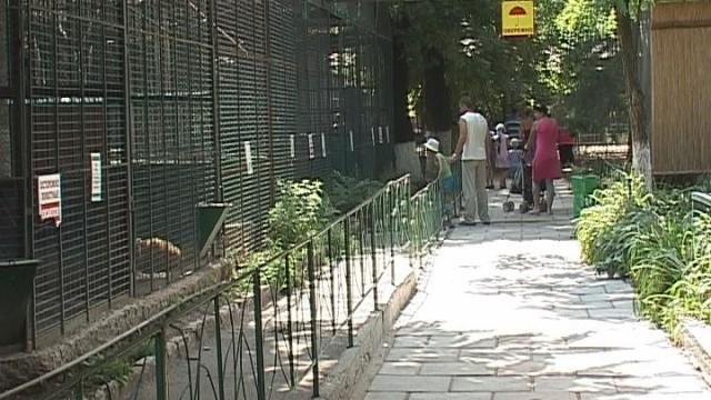 Благоустройство зоопарка в рамках Социально активного гражданина