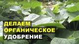 Органическое удобрение своими руками