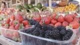 Почем витамины с ветки