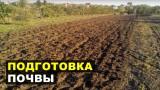 Подготовка почвы под посадку чеснока