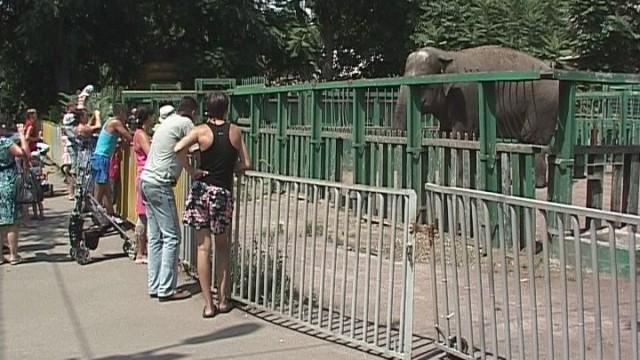 ВЕСТИ ОДЕССА ФЛЕШ за 8 сентября  2017 года 16:00