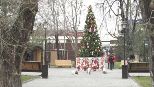 Новогодний переполох: готовы ли одесситы к празднику?
