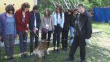 Одесская таможня: сканирование грузов, служебные собаки и запрещенные вещества