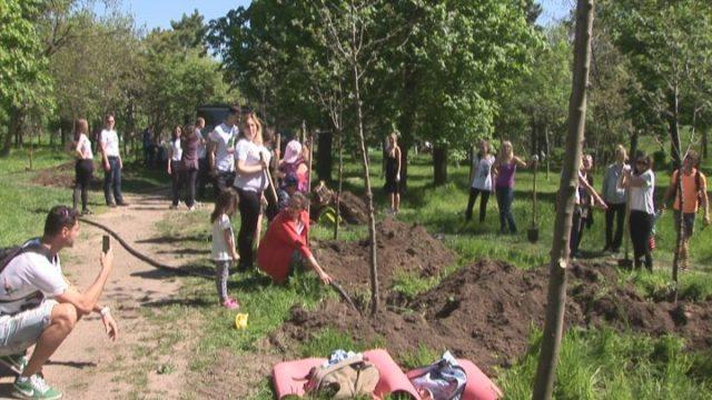 Шаг навстречу природе. Акция по озеленению в Одессе
