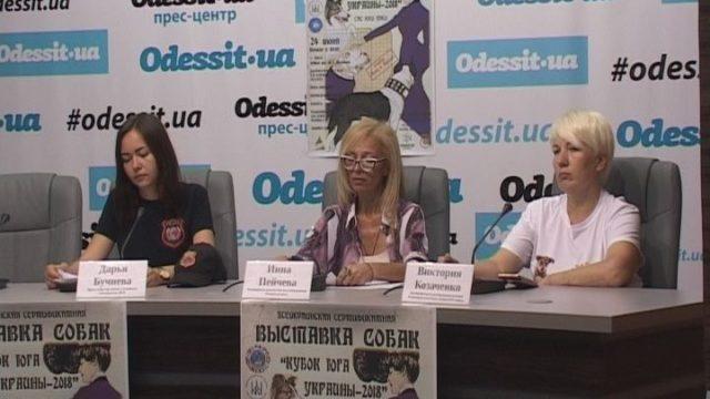 Кубок Юга Украины. Всеукраинская выставка собак в Одессе