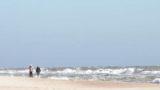 «Не дадим украсть пляжи Затоки!»