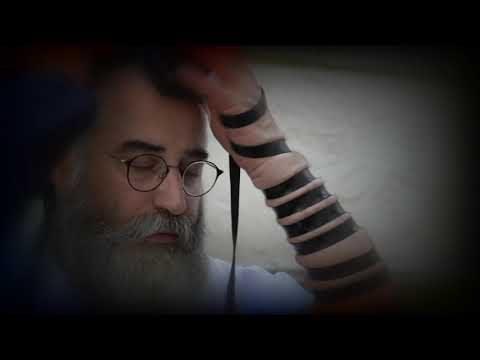 Тижнева глава Ніцавім-Вайєлех