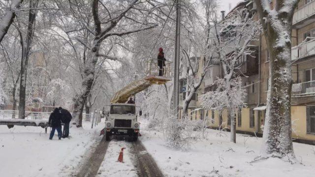 В Одесі території дитсадків стають непрохідними через деревопад