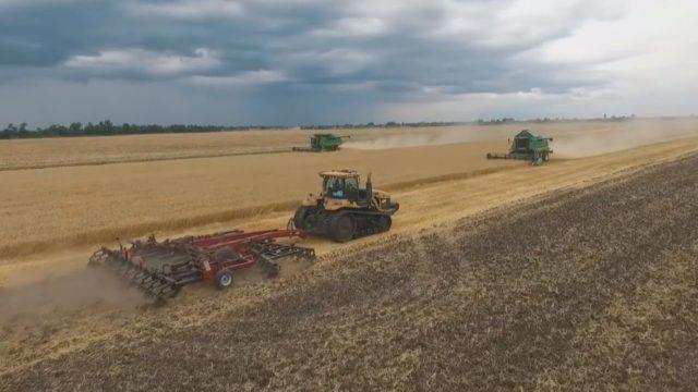 Аграрний сектор — локомотив економіки України