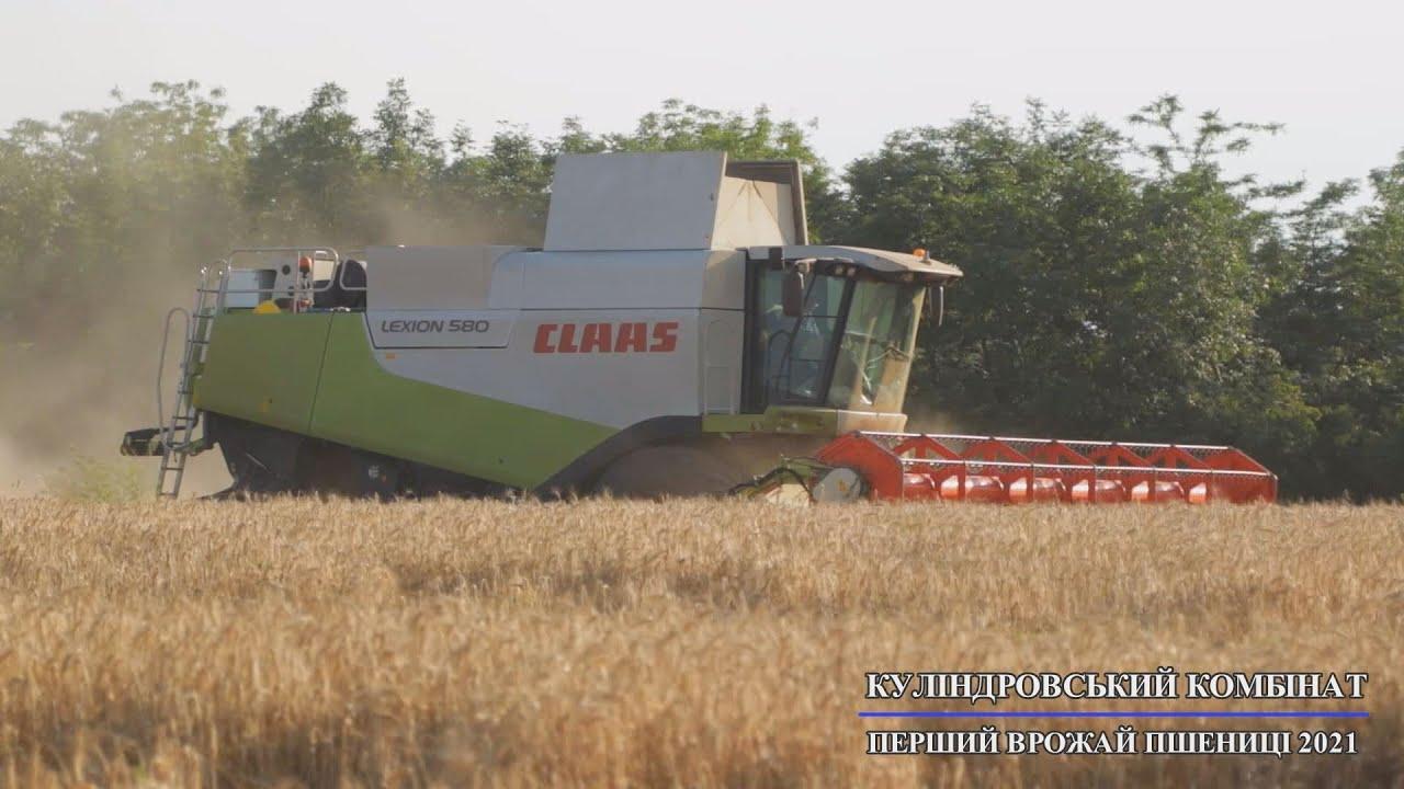 Перший врожай пшениці 2021. Куліндоровський комбінат