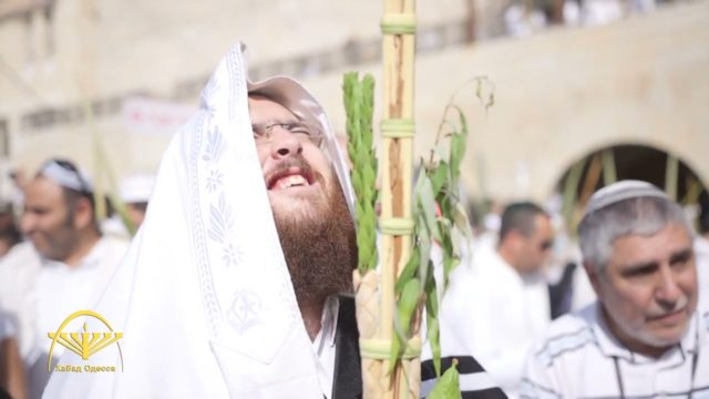 Шабат холь а-моед Суккот
